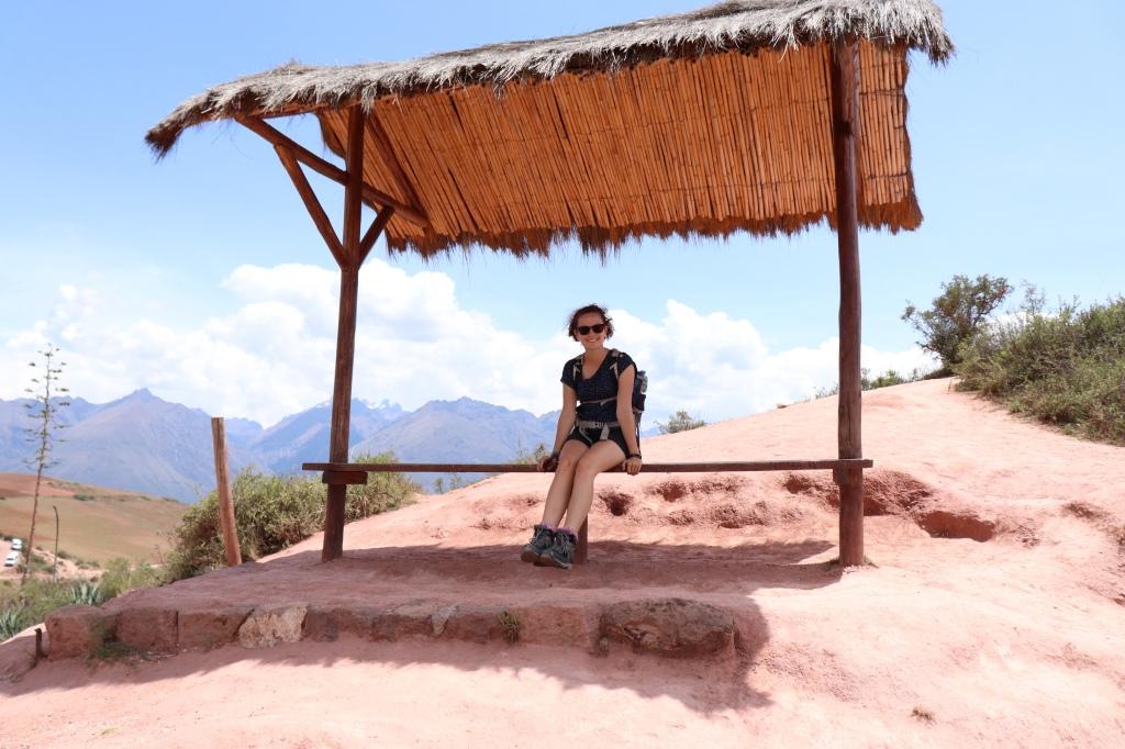 Daisy sitting near the ruins